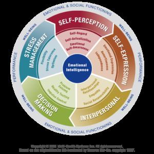Emotional Intelligence Leadership Coaching